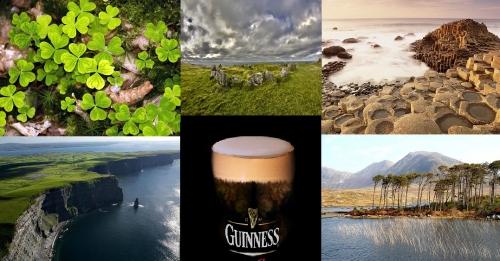 trefles-irlandais.jpg